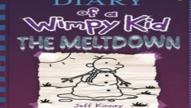 Photo of 'Diary of a wimpy kid: The Meltdown' book review